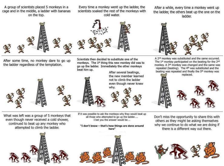 ที่มา https://erikbuys.files.wordpress.com/2012/04/monkeys-scapegoating-guilty-by-association.jpg