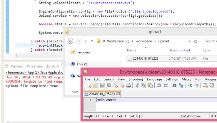 client calll secure ws