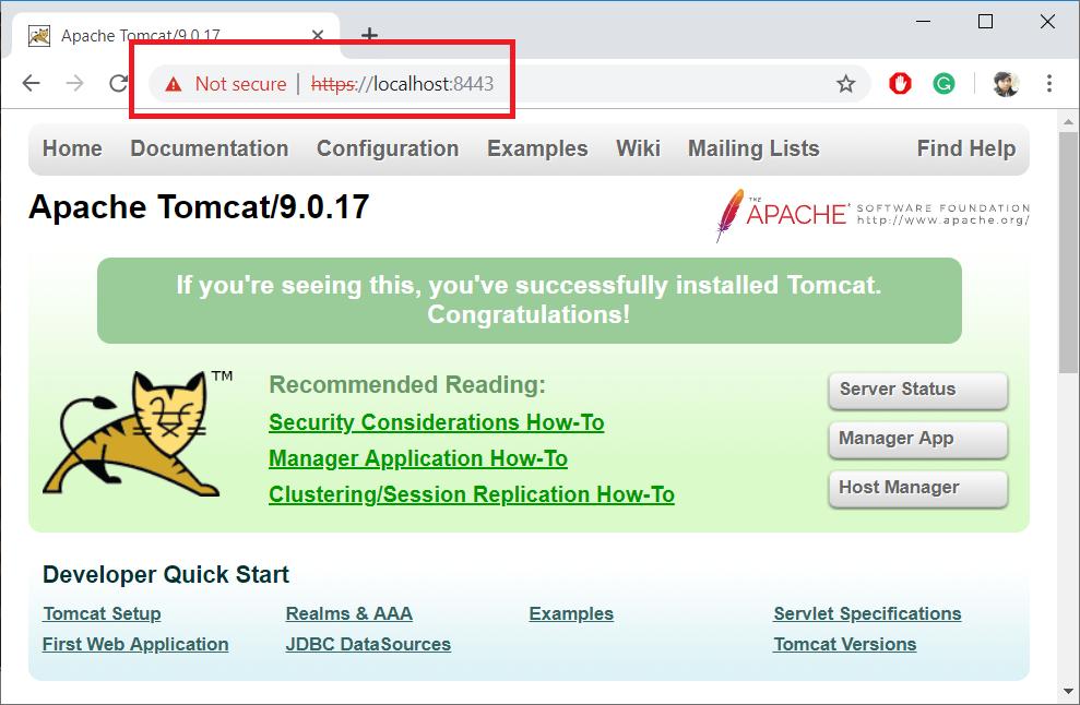 เรียก Service ที่ใช้ HTTPS แบบ self signed certificate